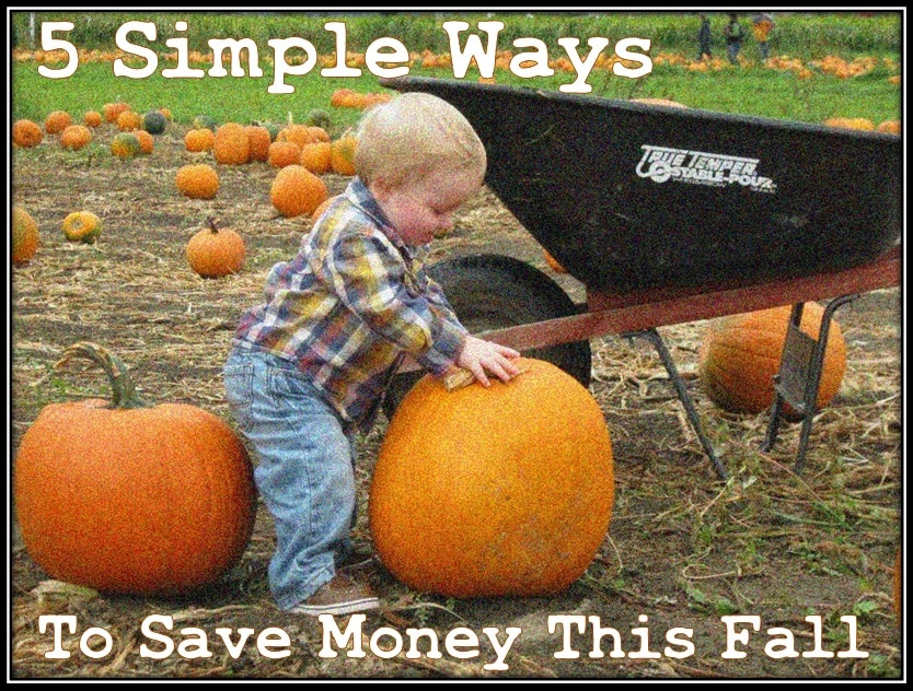5 Simple Ways To Save Money This Fall