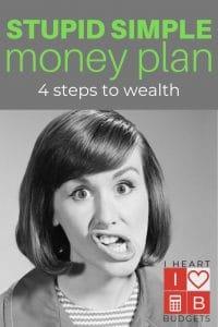 stupid simple money plan