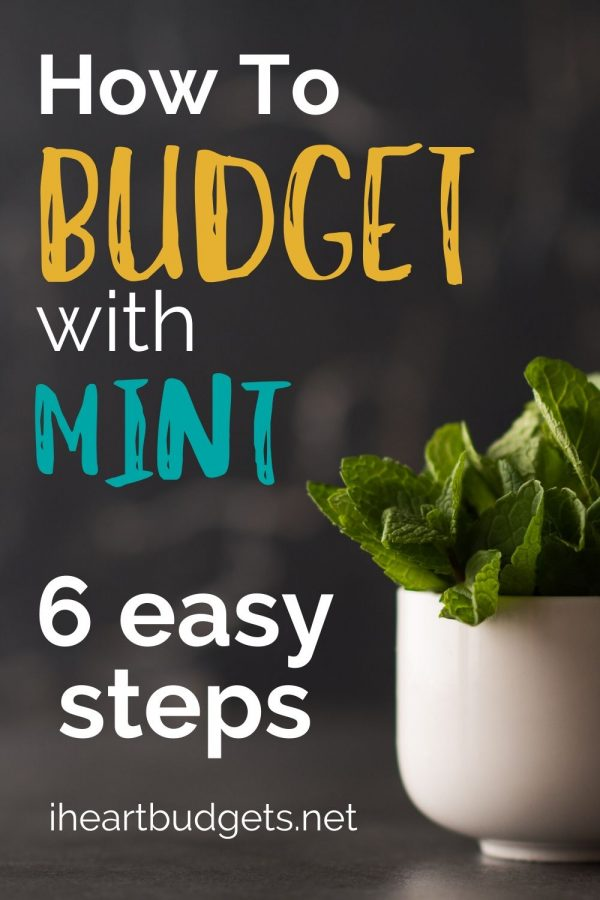 Budget With Mint